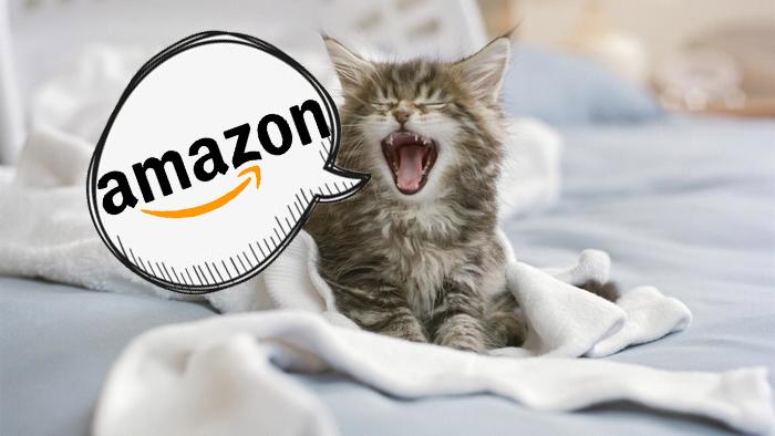 amazon-regalo-community-manager